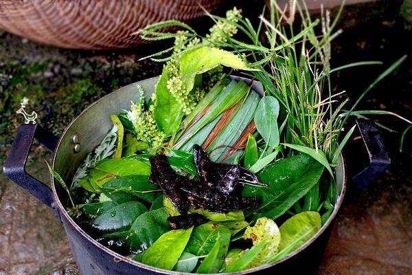 Các loại lá xông hơi sau sinh có rất nhiều loại