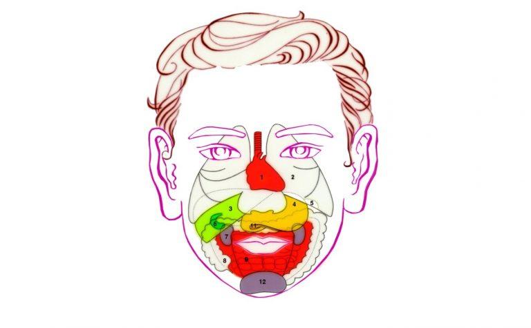 Diện chẩn được ứng dụng nhiều trong điều trị bệnh